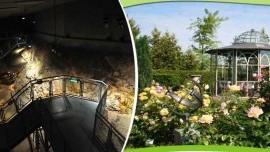 Ametystové polia a zážitkové záhrady Kittenberger