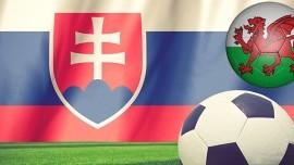 Zájazd na zápas EURO 2016: Wales - Slovensko