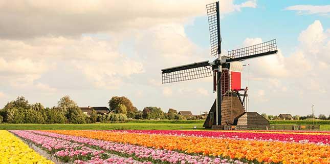 https://cestovnakancelariadaka.sk/files/product/5-dnovy-zajazd-do-holandska-s-kvetinovou-vystavou-1-645x320.jpg
