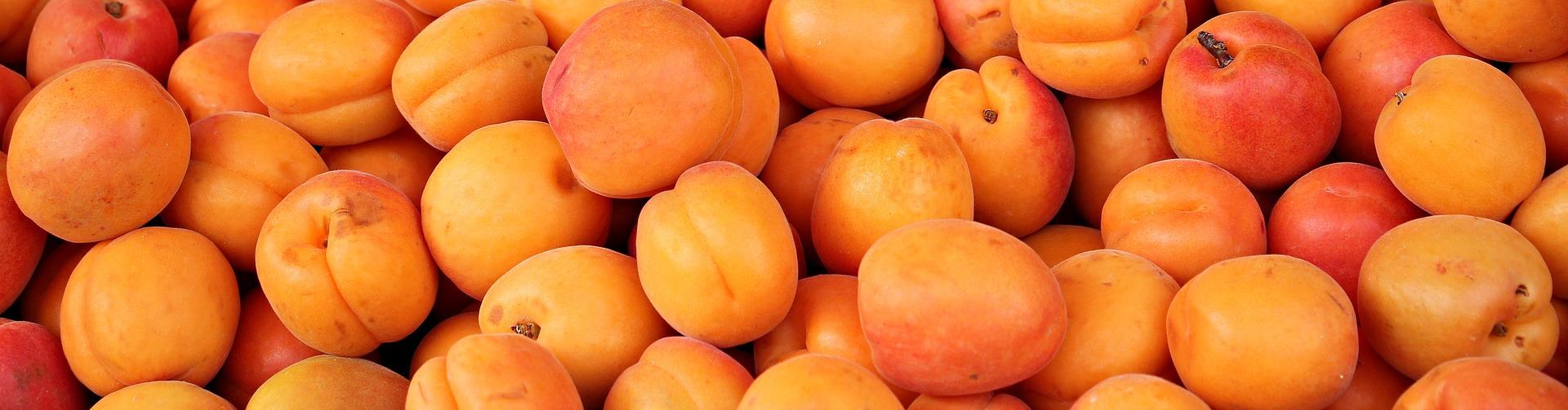 https://cestovnakancelariadaka.sk/files/product/apricots-1422591_1920.jpg