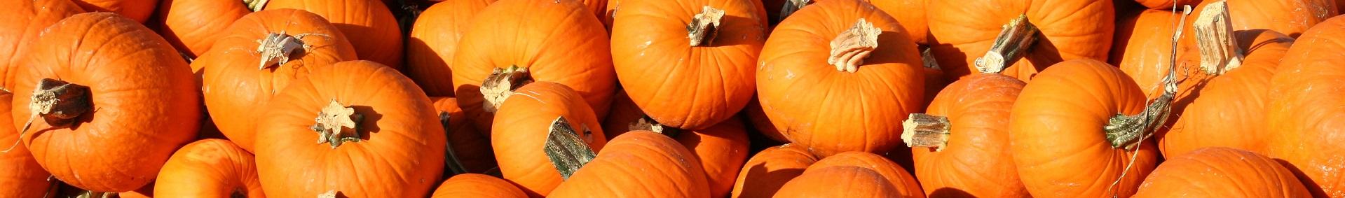 https://cestovnakancelariadaka.sk/files/product/indiana-us30-pumpkins.jpg