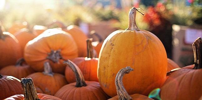 https://cestovnakancelariadaka.sk/files/product/pumpkins-2871269_960_720.jpg